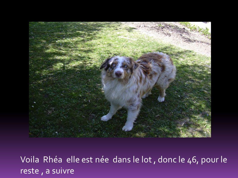 Voila Rhéa elle est née dans le lot , donc le 46, pour le reste , a suivre
