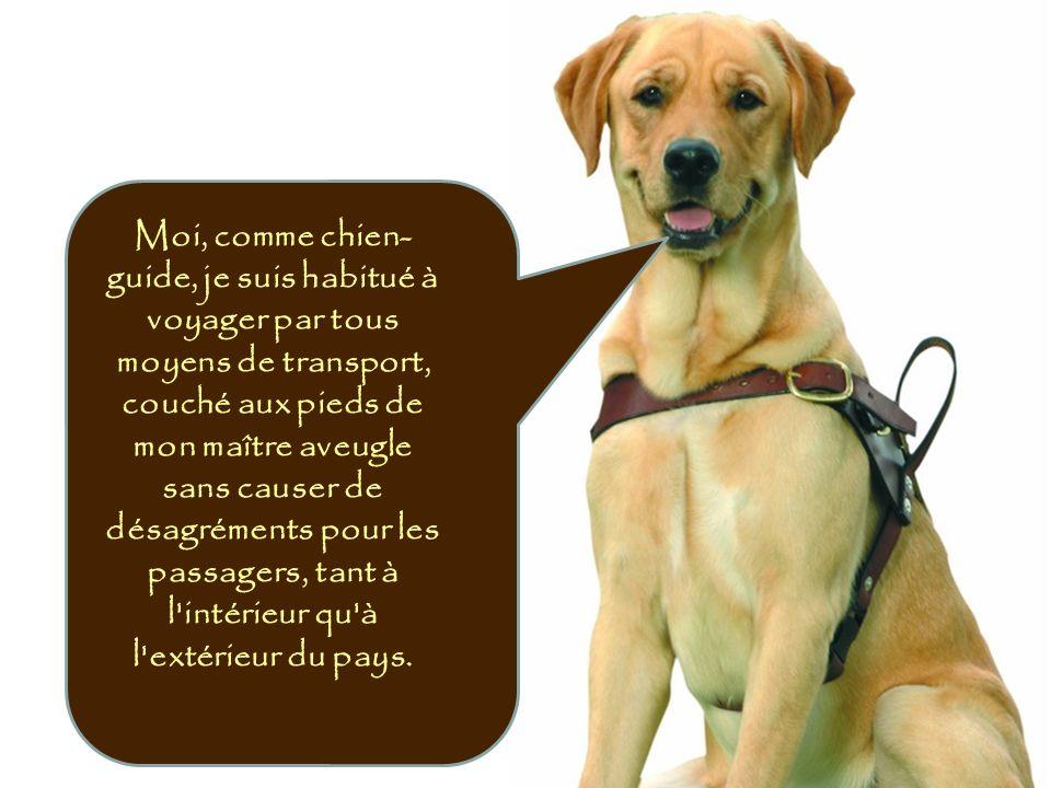 Moi, comme chien-guide, je suis habitué à voyager par tous moyens de transport, couché aux pieds de mon maître aveugle sans causer de désagréments pour les passagers, tant à l intérieur qu à l extérieur du pays.