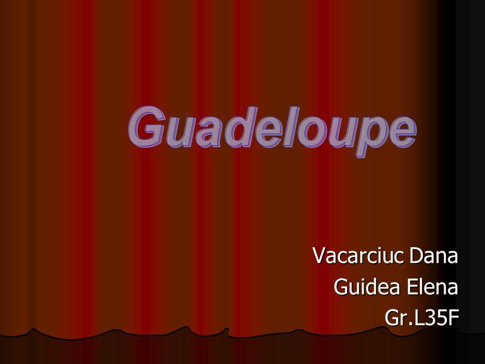 Vacarciuc Dana Guidea Elena Gr.L35F