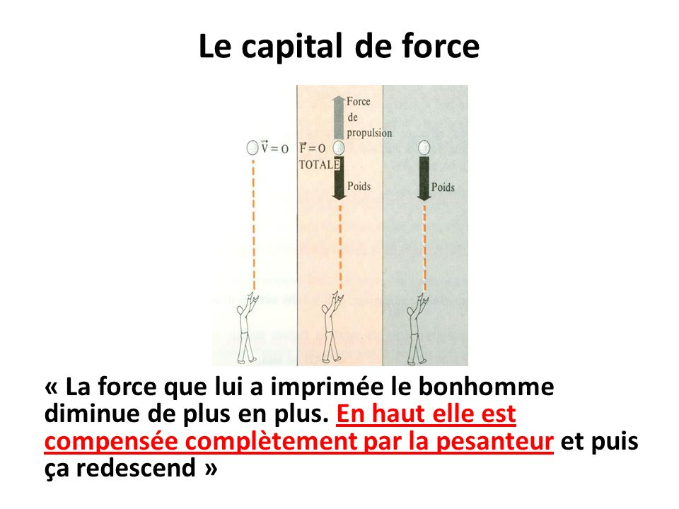 Le capital de force