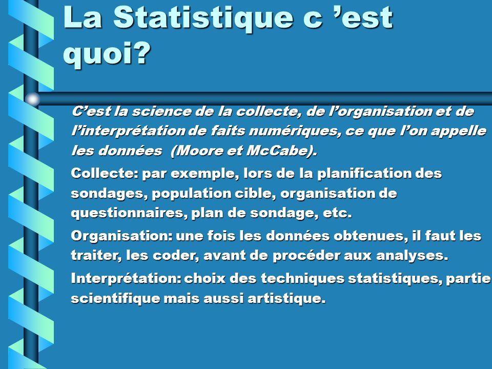 La Statistique c 'est quoi