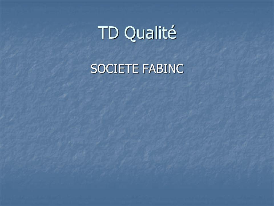 TD Qualité SOCIETE FABINC