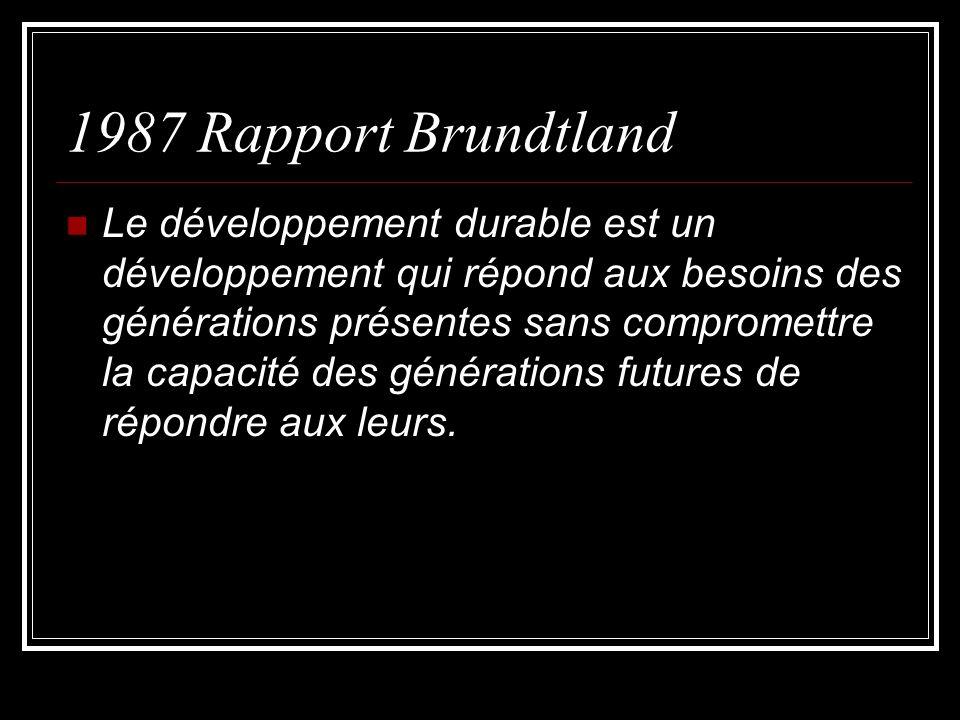 1987 Rapport Brundtland