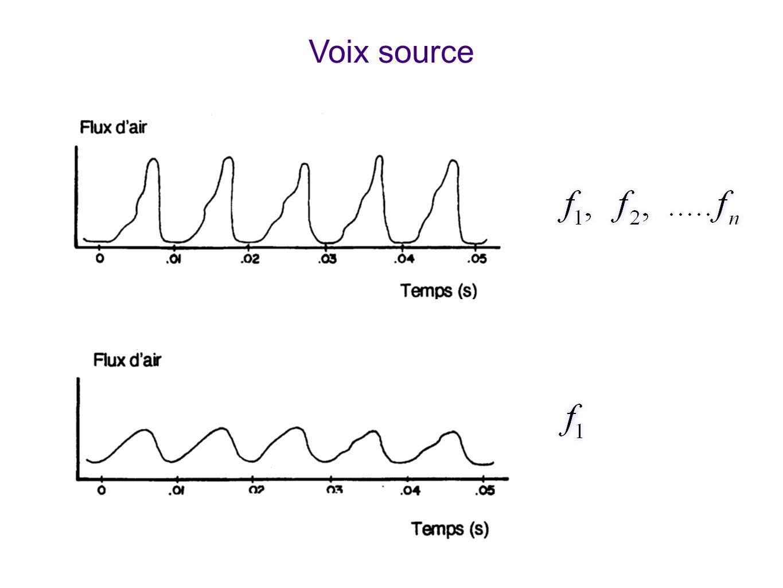 Voix source Montre la voix source produite par les cordes vocales. Les cavités résonantes (bouche, pharynx) n'interviennent pas encore.