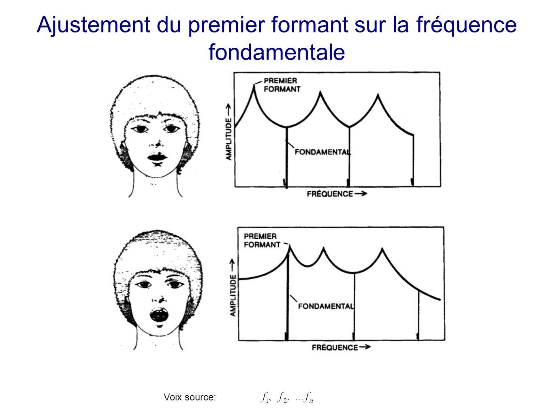Ajustement du premier formant sur la fréquence fondamentale