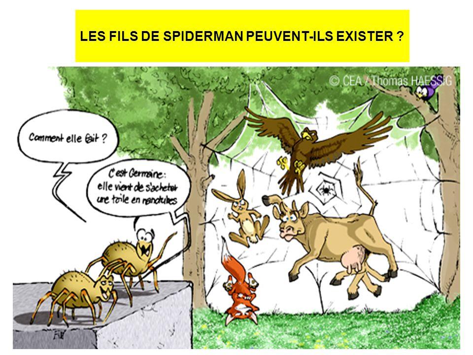 LES FILS DE SPIDERMAN PEUVENT-ILS EXISTER