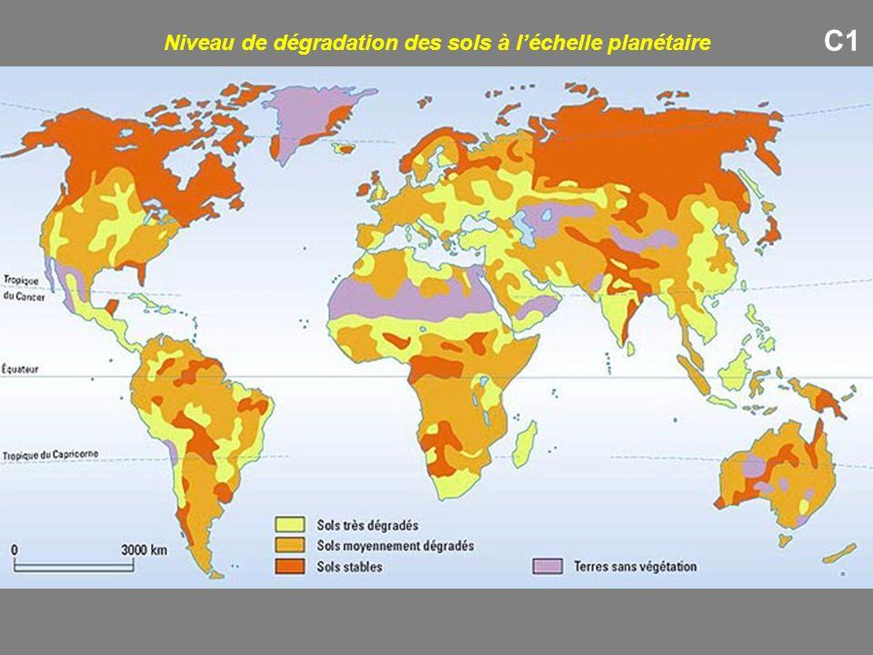 Niveau de dégradation des sols à l'échelle planétaire