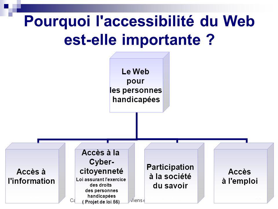 Pourquoi l accessibilité du Web est-elle importante