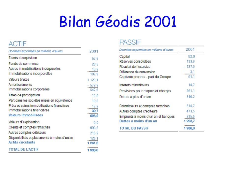 Bilan Géodis 2001