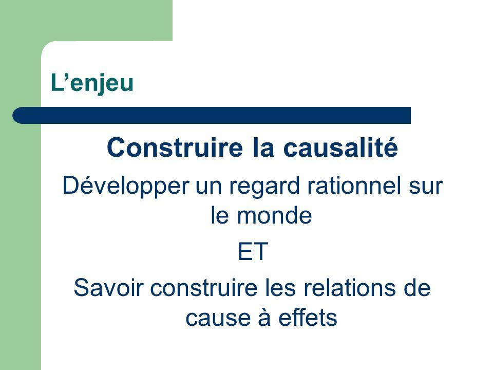 Construire la causalité
