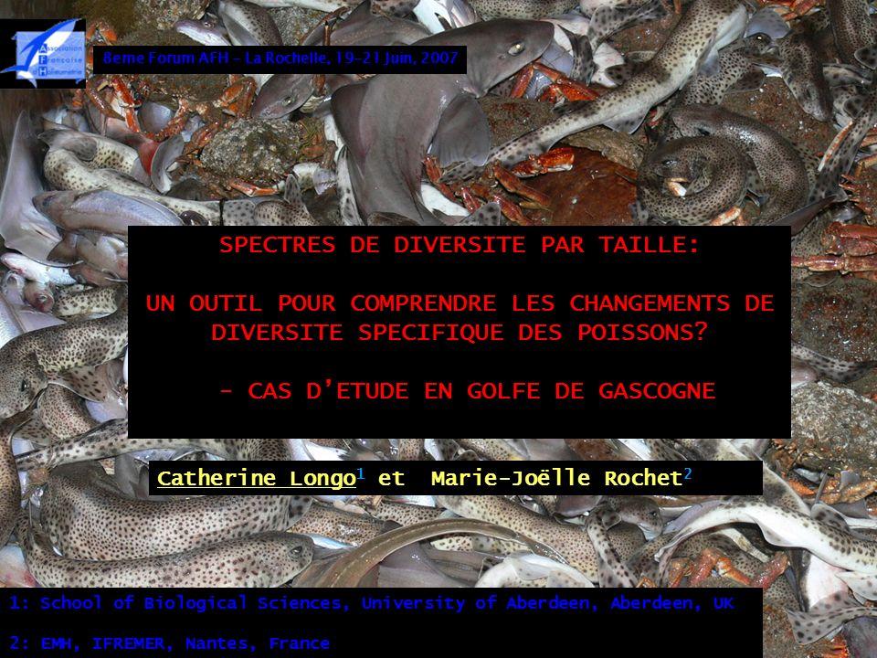 SPECTRES DE DIVERSITE PAR TAILLE: - CAS D'ETUDE EN GOLFE DE GASCOGNE