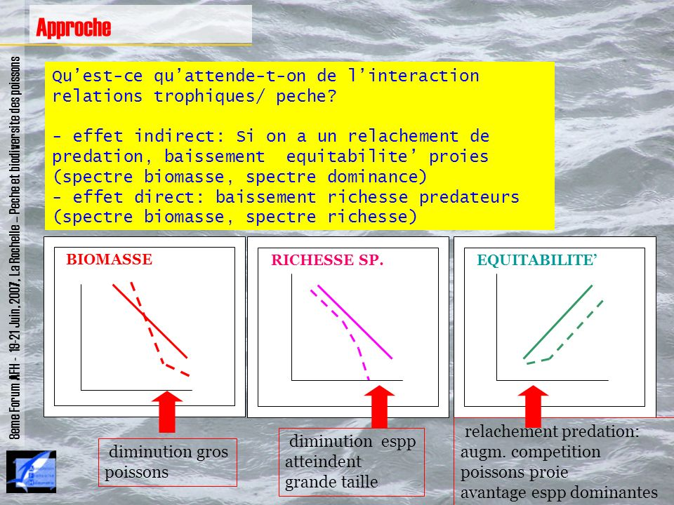 8eme Forum AFH - 19-21 Juin, 2007, La Rochelle – Peche et biodiversite des poissons