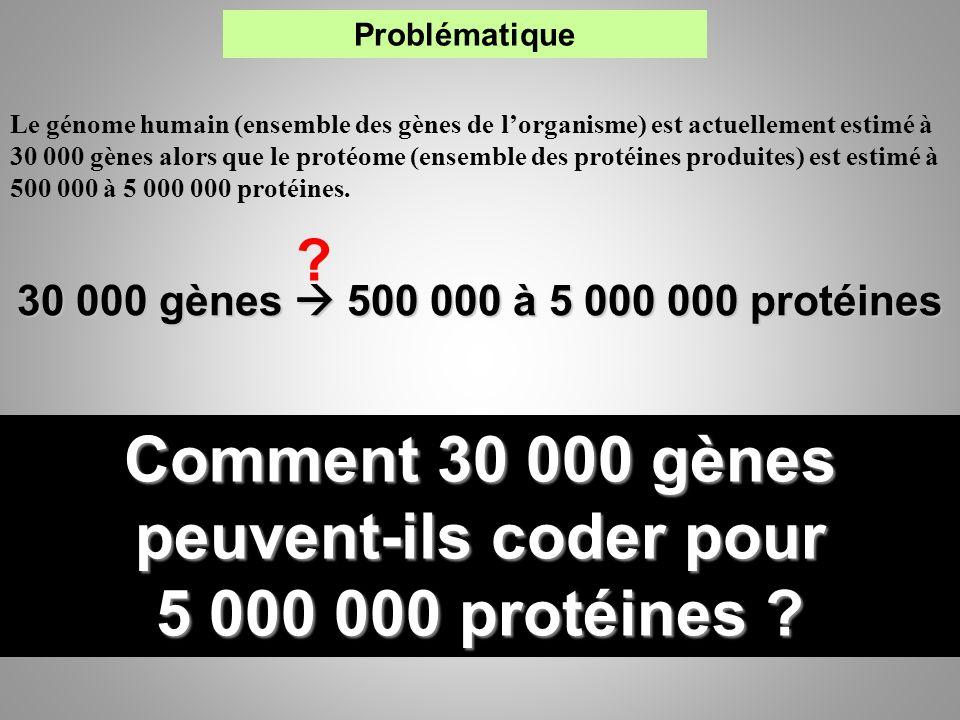 Comment 30 000 gènes peuvent-ils coder pour