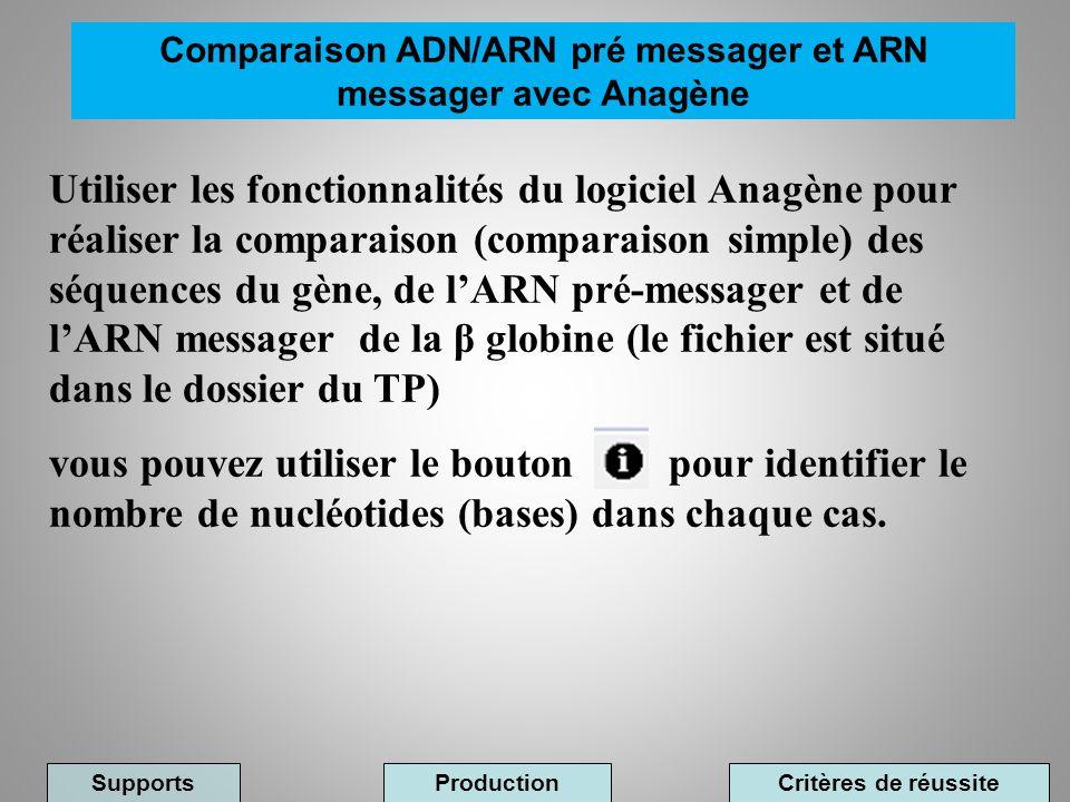 Comparaison ADN/ARN pré messager et ARN messager avec Anagène