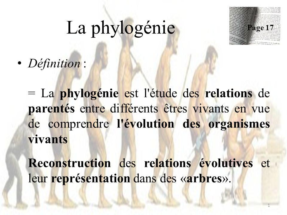 La phylogénie Définition :