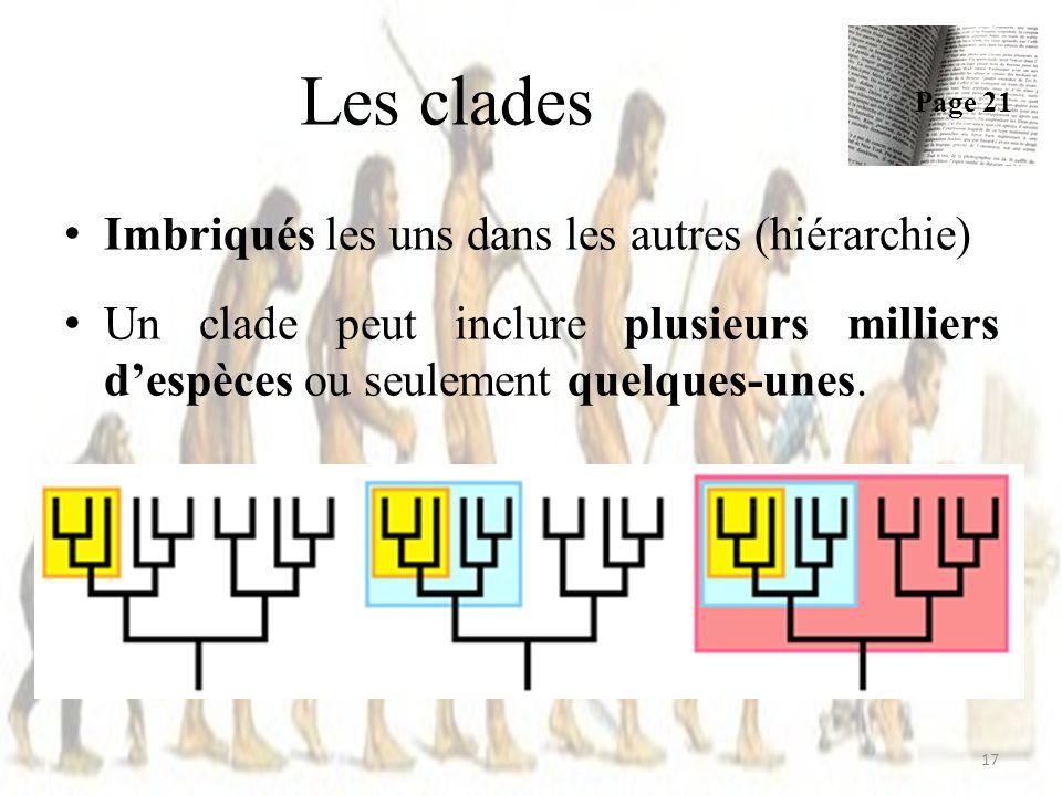 Les clades Imbriqués les uns dans les autres (hiérarchie)
