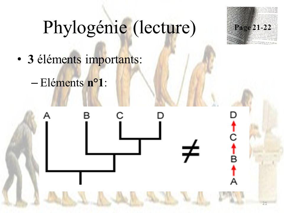 Phylogénie (lecture) Page 21-22 3 éléments importants: Eléments n°1:
