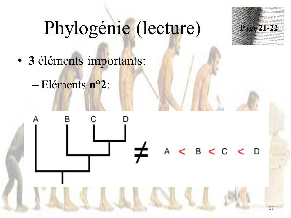 Phylogénie (lecture) Page 21-22 3 éléments importants: Eléments n°2: