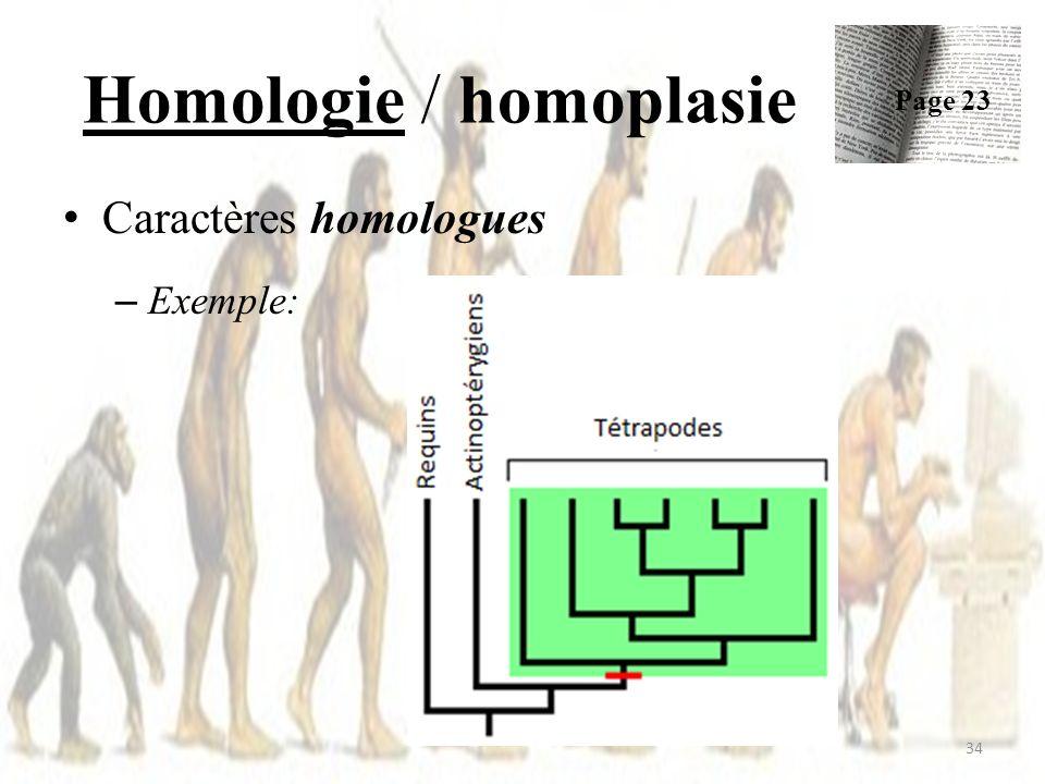 Homologie / homoplasie