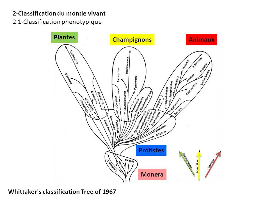 2-Classification du monde vivant 2.1-Classification phénotypique