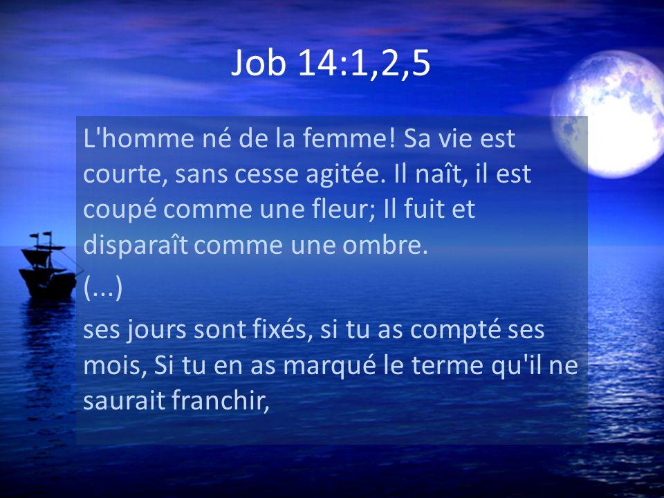 Job 14:1,2,5