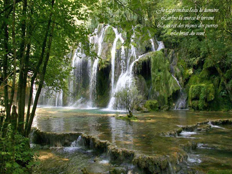 Je t apprendrai l eau la lumière L arbre la source le torrent