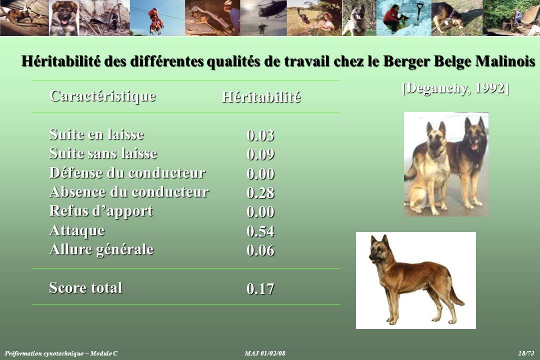 Héritabilité des différentes qualités de travail chez le Berger Belge Malinois