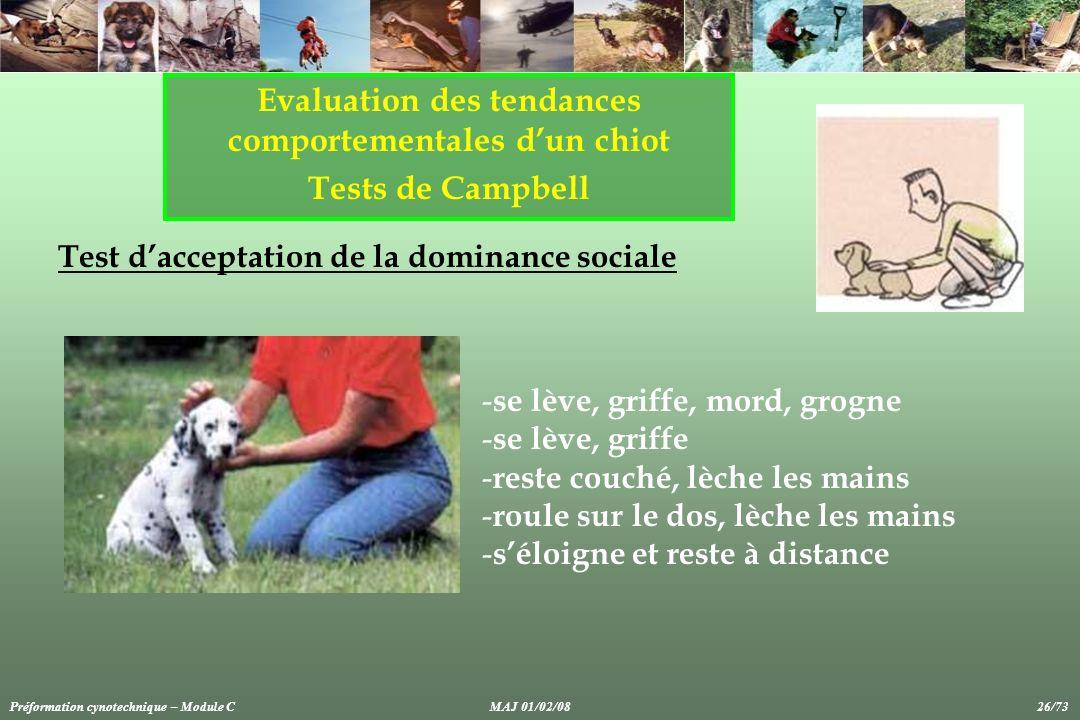 Evaluation des tendances comportementales d'un chiot