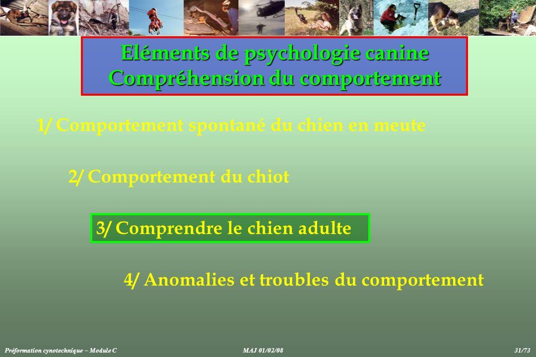 Eléments de psychologie canine Compréhension du comportement