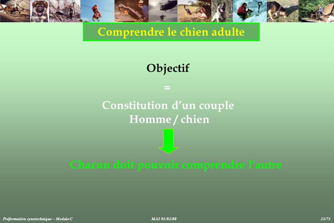 Comprendre le chien adulte Constitution d'un couple