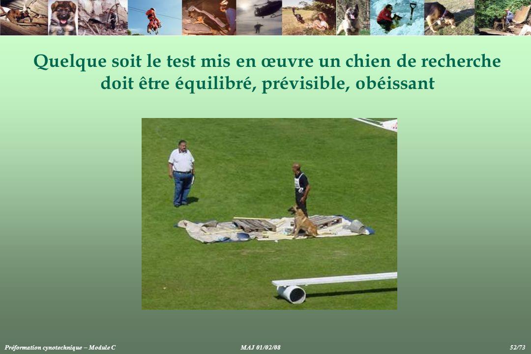 Quelque soit le test mis en œuvre un chien de recherche doit être équilibré, prévisible, obéissant