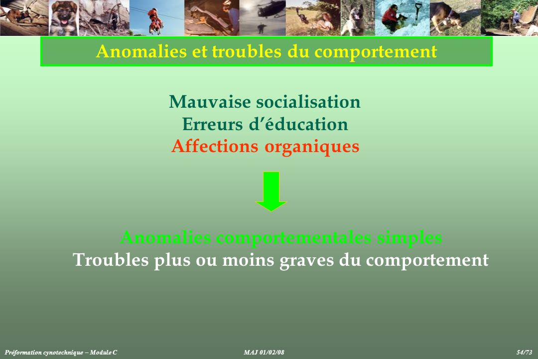 Anomalies et troubles du comportement