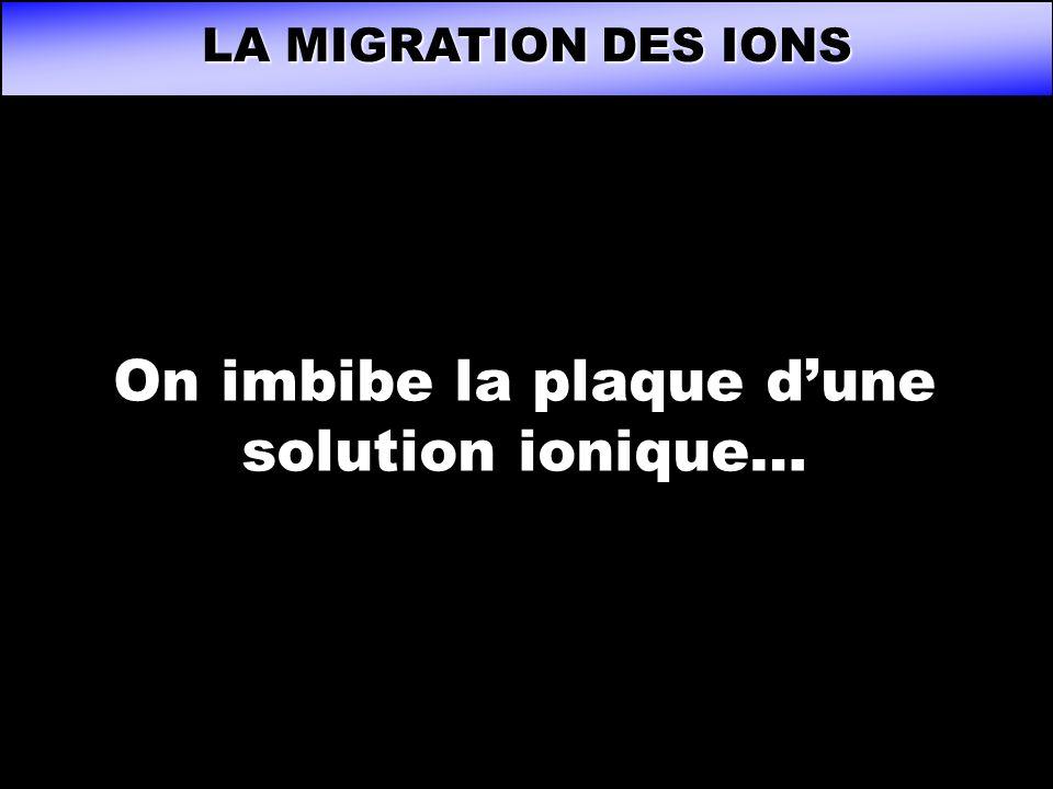 On imbibe la plaque d'une solution ionique…