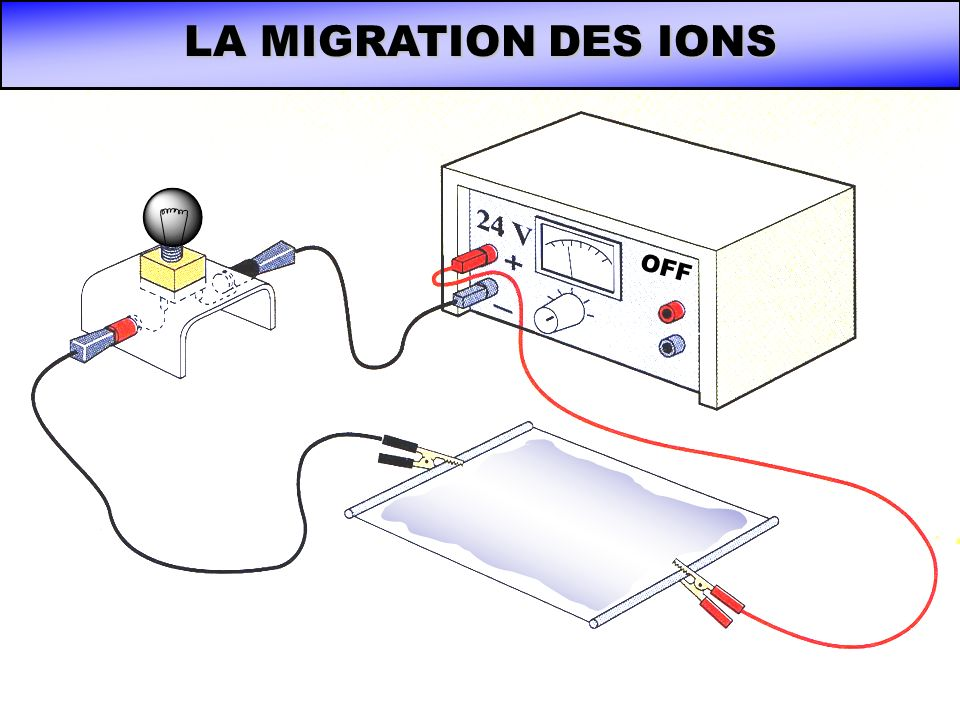 LA MIGRATION DES IONS OFF