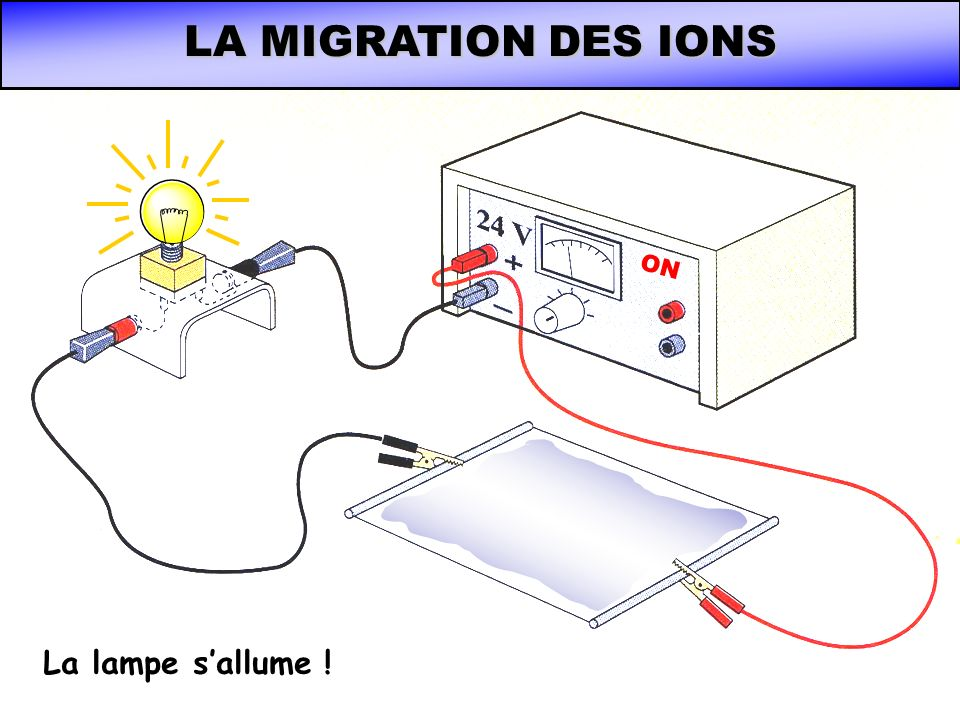 LA MIGRATION DES IONS ON La lampe s'allume !