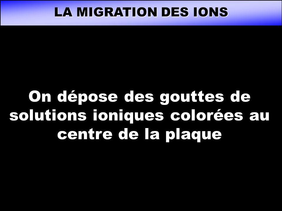 LA MIGRATION DES IONS On dépose des gouttes de solutions ioniques colorées au centre de la plaque