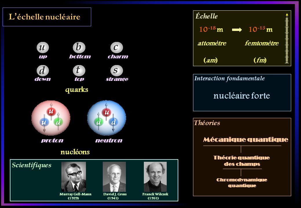 u b c d t s nucléaire forte L'échelle nucléaire 10-18 m 10-15 m quarks