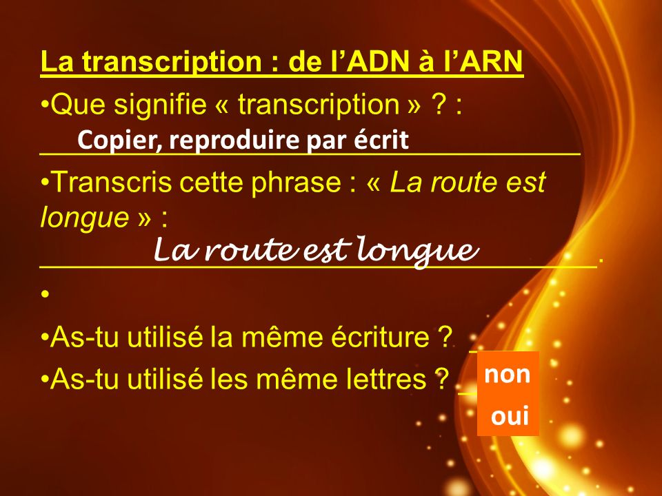 La transcription : de l'ADN à l'ARN