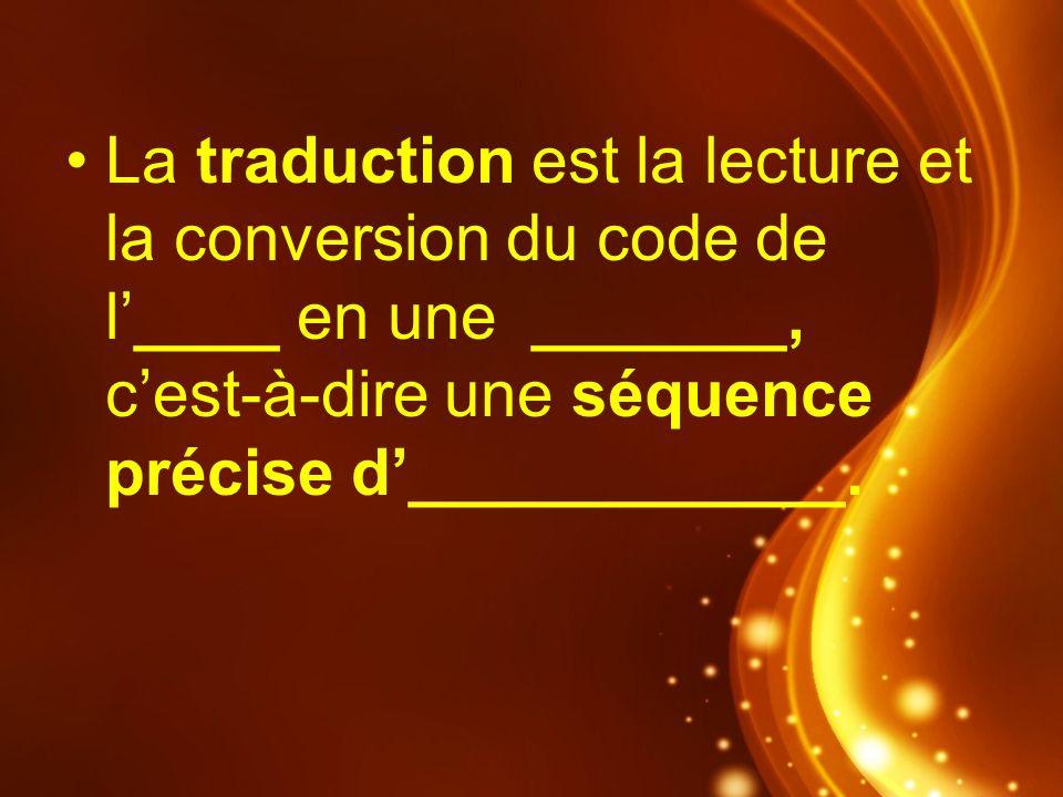 La traduction est la lecture et la conversion du code de l'____ en une _______, c'est-à-dire une séquence précise d'____________.