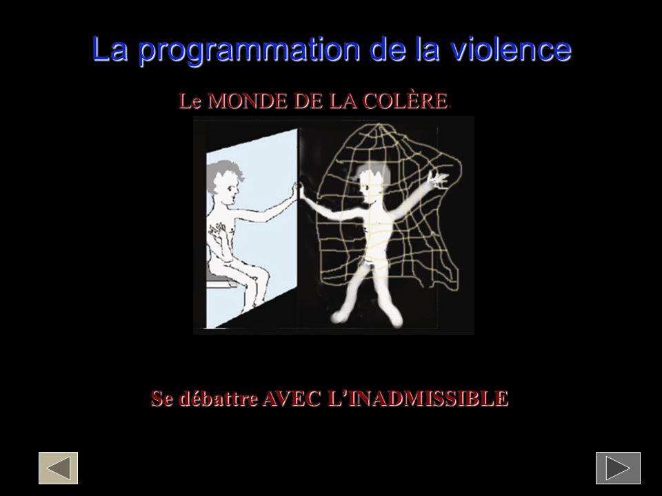 La programmation de la violence
