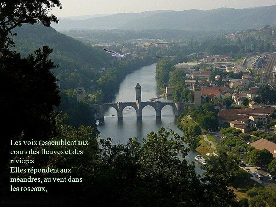 Les voix ressemblent aux cours des fleuves et des rivières