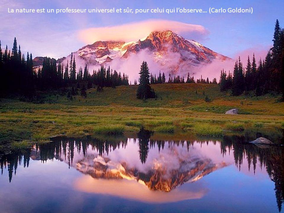 La nature est un professeur universel et sûr, pour celui qui l'observe… (Carlo Goldoni)
