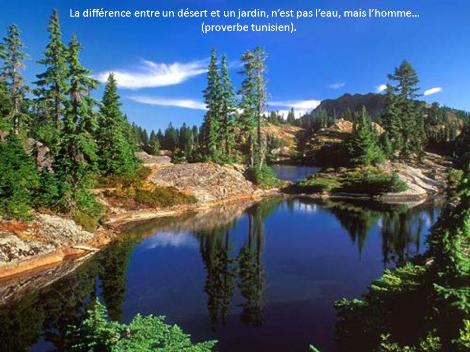 La différence entre un désert et un jardin, n'est pas l'eau, mais l'homme…
