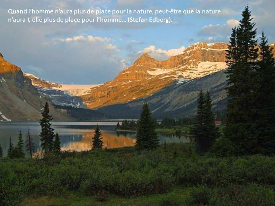 Quand l'homme n'aura plus de place pour la nature, peut-être que la nature n'aura-t-elle plus de place pour l'homme… (Stefan Edberg).