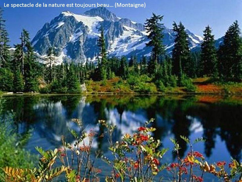 Le spectacle de la nature est toujours beau… (Montaigne)