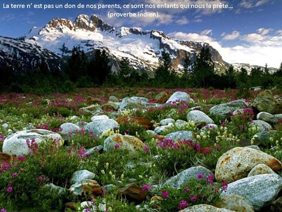 La terre n' est pas un don de nos parents, ce sont nos enfants qui nous la prête…