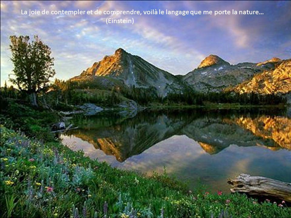La joie de contempler et de comprendre, voilà le langage que me porte la nature…