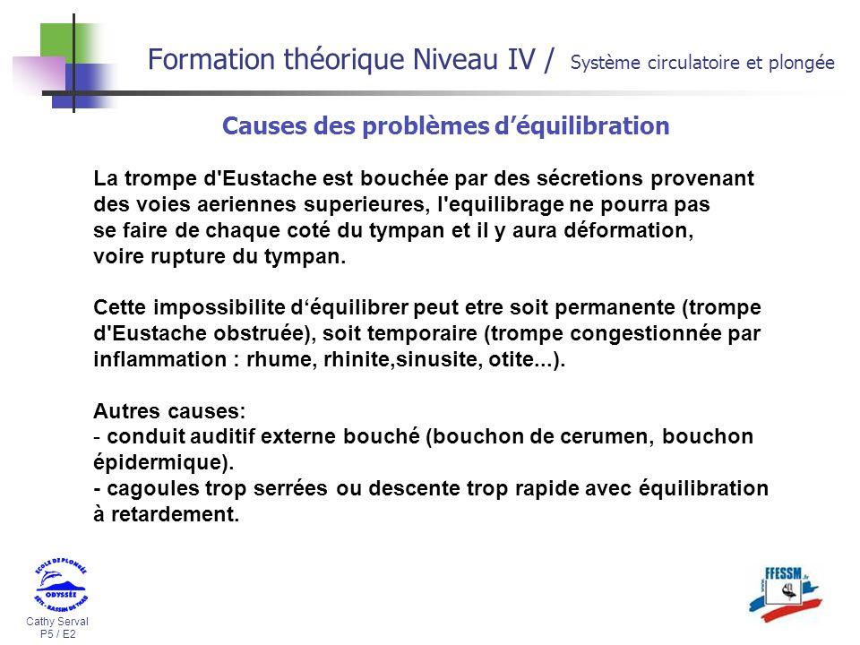 Formation théorique Niveau IV / Système circulatoire et plongée
