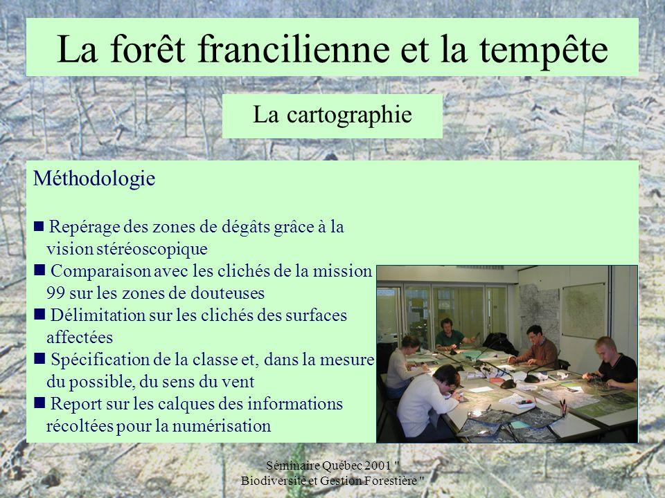 La forêt francilienne et la tempête