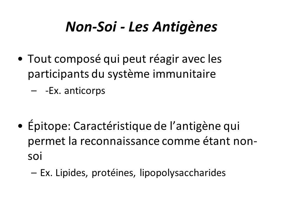 Non-Soi - Les Antigènes